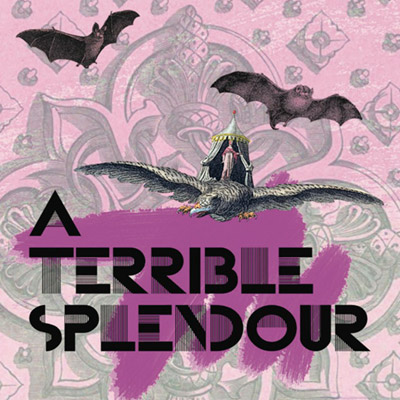 dsr051 : A Terrible Splendour - Demo Tape